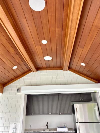 1_ceiling3