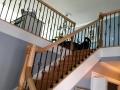 iron railing2